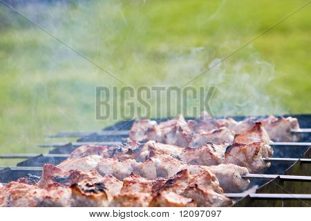 toasted  shashlick on skewers