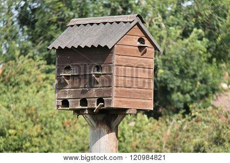 Birds House Nesting Box.