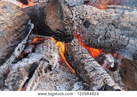 Wood Log Fire.