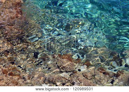 Sea urchins in Gerona in the sea