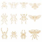 Постер, плакат: Set Of Insects In Vector