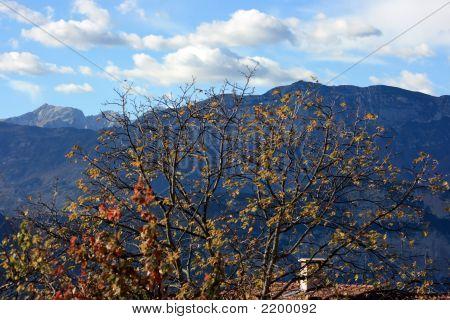 Outono alpino