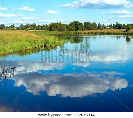 Summer Rushy Lake View