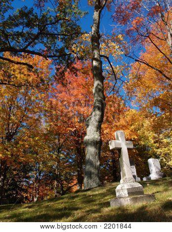 Graveyard In Autumn