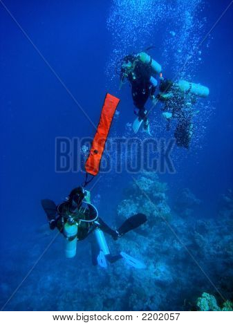 Divers Deploying Buoy