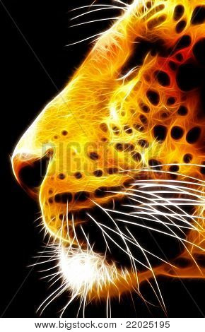 Neon Isolated Close-up Leopard Face Side View