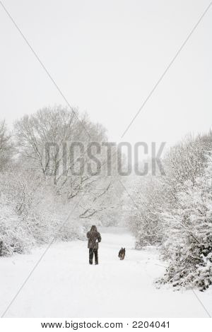 Man And Dog In Snow With Copy Space
