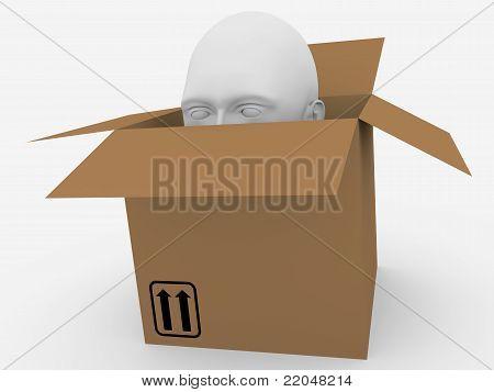 Caja de cabeza