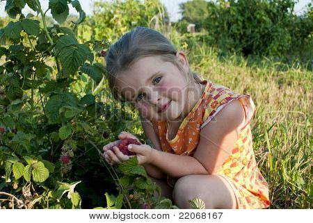 The Girl Collects A Raspberry