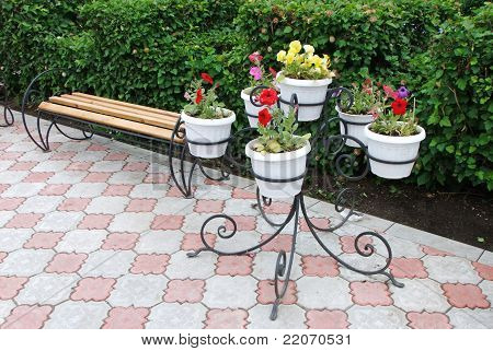 flowerses and bench in park