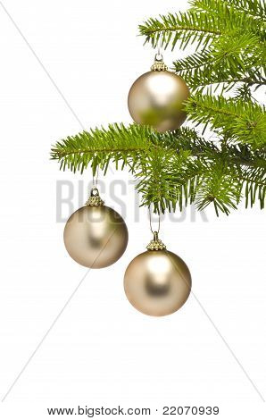 Three Golden Decoration Balls In Christmas Tree Branch