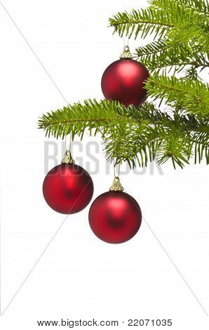 Three Red Decoration Balls In Christmas Tree Branch