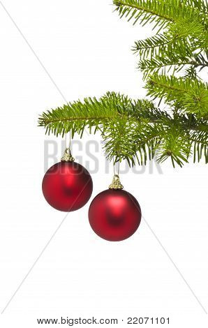 Two Red Decoration Balls In Christmas Tree Branch