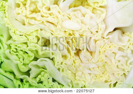 Savoy Cabbage Close View
