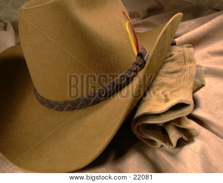 Cowboy Hat & Gloves 1