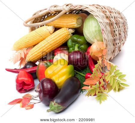 Colorful Vegetables In Basket