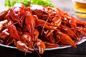 Plate Of Tasty Boiled Crayfish poster