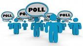 Poll Survey People Answer Questions 3d Illustration poster