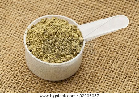 Scoop of raw organic hemp protein powder - super food rich in nutrients (proteins, antioxidants, amino and fatty acids)