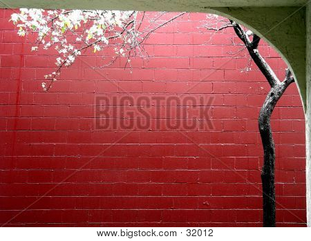 poster of Spring In A City