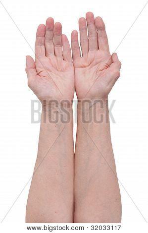 Palm Of An Elderly Man