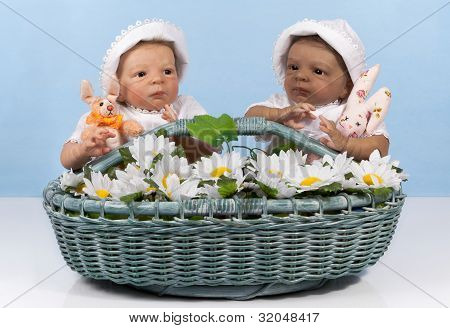 Two Babies In The Basket