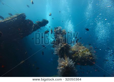 Shipwreck USAT Liberty (Tulamben, Indonesia) underwater shoot