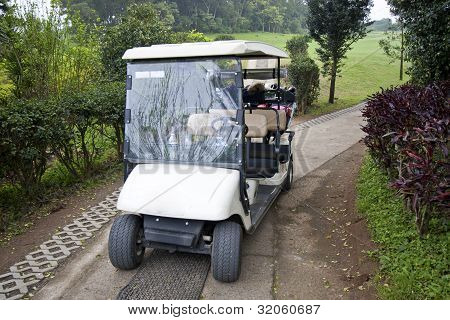 Tropical Golf Cart