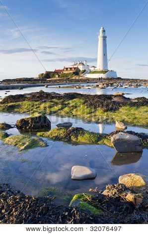 St Marys Lighthouse At Low Tide