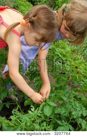 Two Girls Gardening