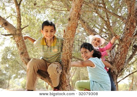 Children playing and climbing the tree