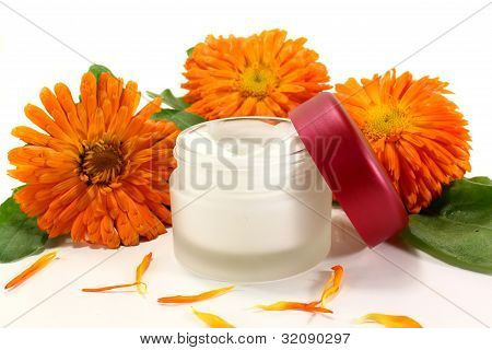 Marigold Salve