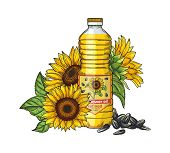 Sunflower Oil Sketch. Vector Seeds, Sunflowers And Oil Bottle Isolated On White Background. Illustra poster