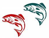 stock photo of trout fishing  - Salmon fish in two variations for fishing sports mascot - JPG