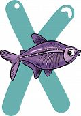 pic of x-ray fish  - cartoon illustration of X letter for x - JPG
