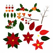 Christmas Elements With Set Of Holly Leaves,berries And Red Poinsettia, Christmas Flower. Isolated O poster