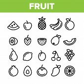 Collection Nature Fruit Elements Vector Icons Set Thin Line. Pineapple And Apple, Strawberry And Gra poster