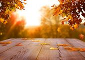 Autumn maple leaves on wooden  table.Falling leaves natural background. poster