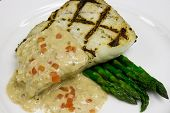 stock photo of halibut  - a simple presentation of a grilled halibut with a cream sauce and asparagus - JPG