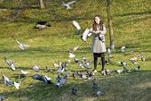 Girl Feeds Pigeons. In The Park In A Sunny Pagoda. Caring For Animals. Beautiful Smiling Woman Feedi poster