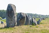 Prehistoric Megalithic Menhirs Alignment In Carnac, Brittany. France poster