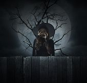 Scary Halloween Witch Standing Over Dead Tree, Full Moon And Cloudy Spooky Sky, Halloween Mystery Co poster