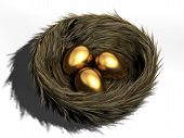 stock photo of bird-nest  - Three golden eggs in a bird nest  - JPG