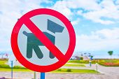 Dog Prohibition Sign. A Sign With A Pattern Prohibiting The Walk Of Dogs On A Green Lawn. No Dog. Ba poster