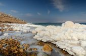 picture of sea salt  - Salt formations in the Dead sea of Israel - JPG