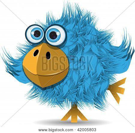 Muito engraçado pássaro azul