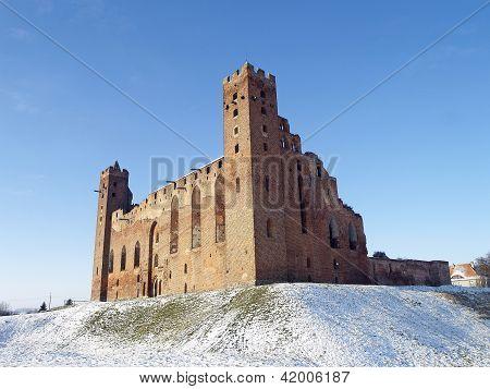 Castle in Radzyn Chelminski