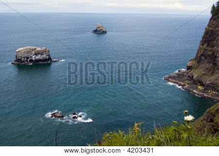 High Rocky Coast In Souther Oregon