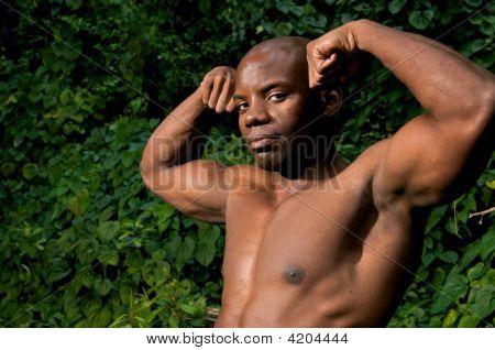 Powerful Biceps