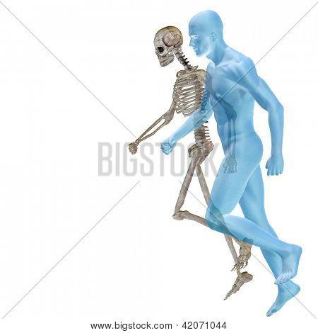 Ideal humano 3D a conceitual de alta resolução para desenhos de anatomia e saúde, isolado no branco backgrou